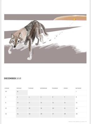 WOLVES OF THE WORLD CALENDARY 2018