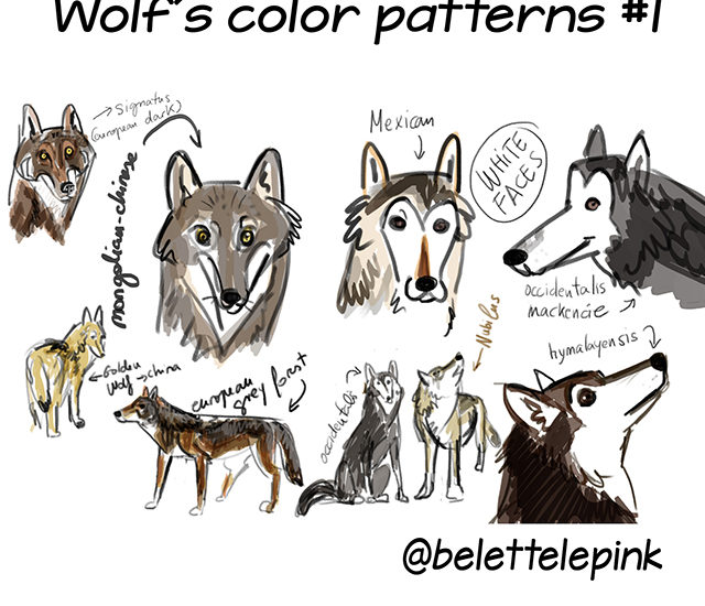 Wolves of the World 2019 Instagram Art Challenge by Belette Le Pink